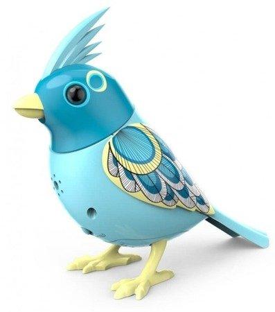 DigiBirds interaktywny śpiewający ptaszek z ramką