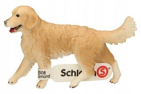 Schleich (SLH16395): Golden retriever suczka
